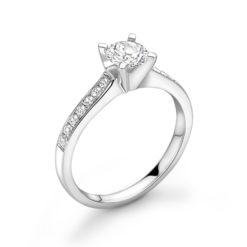 Dakota-ring